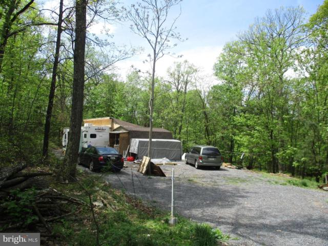 4094 Detour Road, GREAT CACAPON, WV 25422 (#WVMO115260) :: Network Realty Group