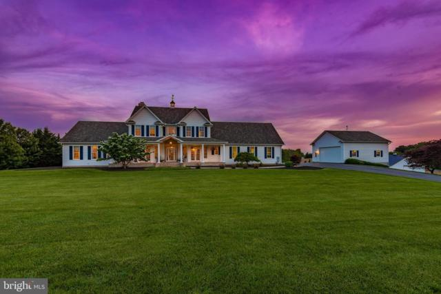 6655 Detrick Road, MOUNT AIRY, MD 21771 (#MDFR245838) :: RE/MAX Plus