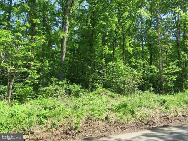 Lot 1 Company Farm Road, YORK SPRINGS, PA 17372 (#PAAD106740) :: LoCoMusings