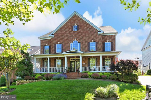 22810 Arbor View Drive, BRAMBLETON, VA 20148 (#VALO383250) :: Advance Realty Bel Air, Inc