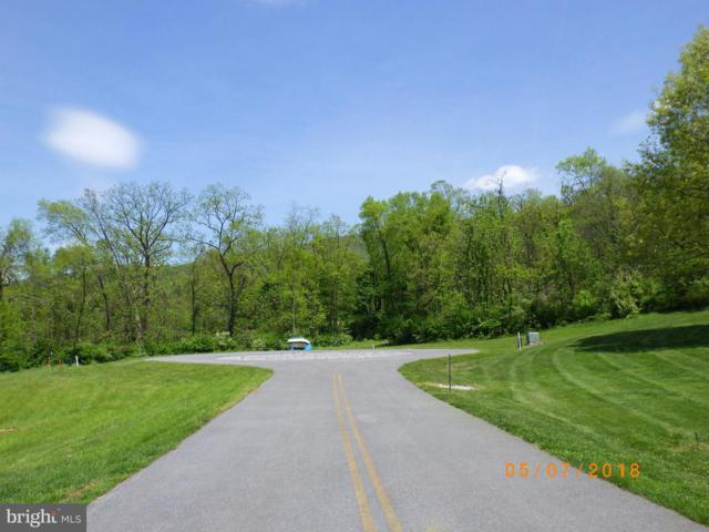 Miller Circle, MCCONNELLSBURG, PA 17233 (#PAFU104096) :: ExecuHome Realty