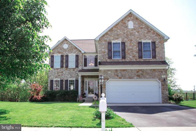 113 Evergreen Circle, DILLSBURG, PA 17019 (#PAYK116254) :: The Heather Neidlinger Team With Berkshire Hathaway HomeServices Homesale Realty