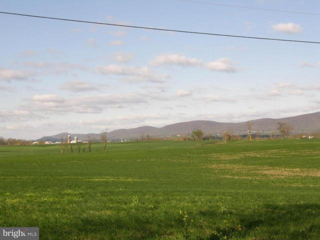 Cool Hollow Road, GREENCASTLE, PA 17225 (#PAFL165438) :: The MD Home Team