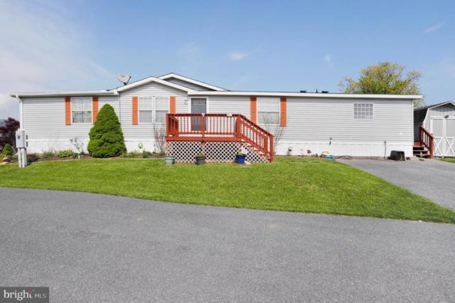 141 Coquina Sands, WAYNESBORO, PA 17268 (#PAFL165442) :: The Joy Daniels Real Estate Group