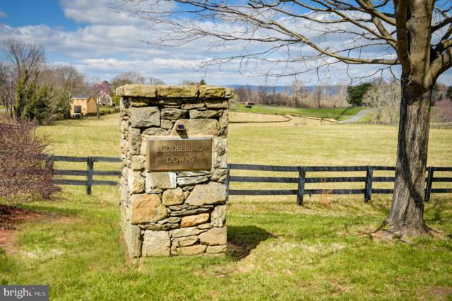 23460 Mersey Road, MIDDLEBURG, VA 20117 (#VALO383426) :: ExecuHome Realty