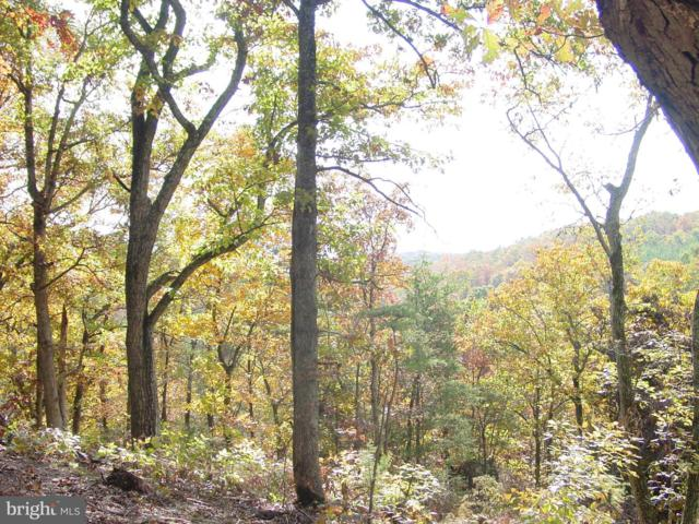Lot 23 Oak Hill Court, STEPHENS CITY, VA 22655 (#VAWR136698) :: Peter Knapp Realty Group