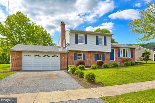 101 Laurel Drive, ENOLA, PA 17025 (#PACB113028) :: Keller Williams of Central PA East