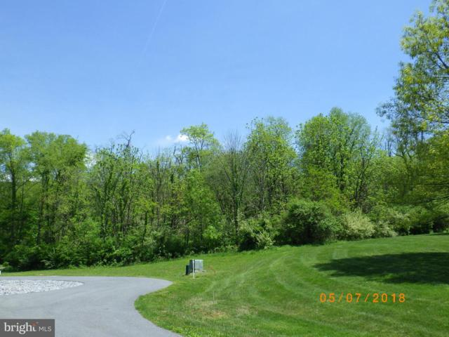 Millers Circle, MC CONNELLSBURG, PA 17233 (#PAFU104100) :: ExecuHome Realty