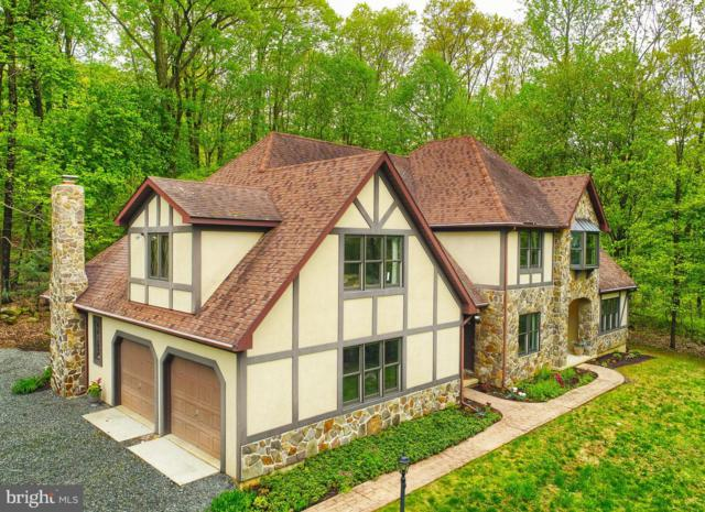 810 Tower Road, ALBURTIS, PA 18011 (#PABK341188) :: ExecuHome Realty
