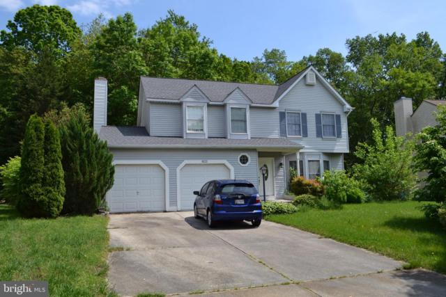 8221 Elkwood Court, PASADENA, MD 21122 (#MDAA399346) :: The Licata Group/Keller Williams Realty