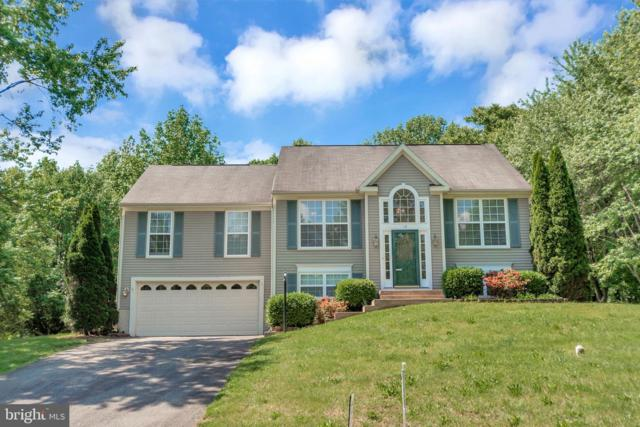 12 Falling Water Court, FREDERICKSBURG, VA 22405 (#VAST210542) :: The Putnam Group