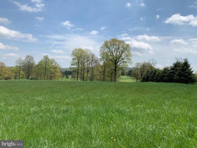167 Slatersville Road, BIGLERVILLE, PA 17307 (#PAAD106796) :: Liz Hamberger Real Estate Team of KW Keystone Realty