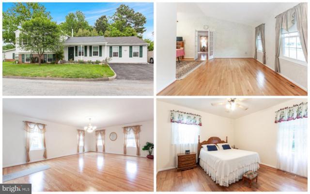 4404 Ollies Turn, HYATTSVILLE, MD 20781 (#MDPG527898) :: Blackwell Real Estate