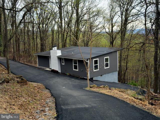241 Bridle Path Road, FRONT ROYAL, VA 22630 (#VAWR136724) :: Eng Garcia Grant & Co.