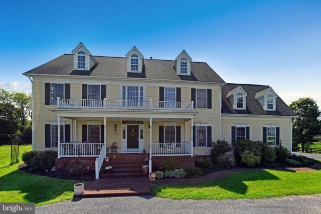37000 Cardigan Place, PURCELLVILLE, VA 20132 (#VALO383636) :: LaRock Realtor Group