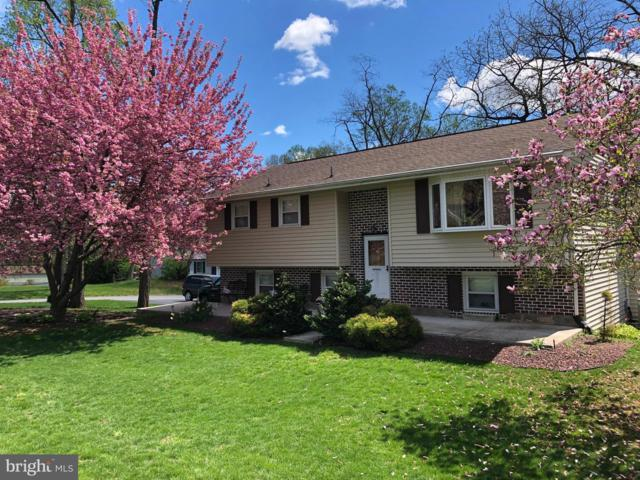 301 Robin Hood Road, DILLSBURG, PA 17019 (#PAYK116516) :: The Joy Daniels Real Estate Group