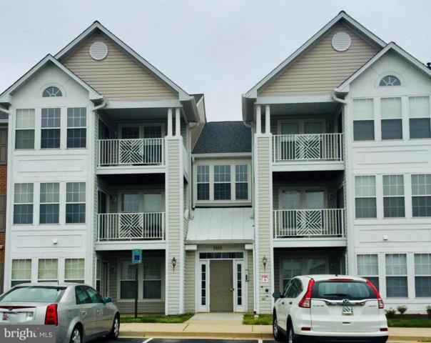2440 Blue Spring Court #201, ODENTON, MD 21113 (#MDAA399580) :: Shamrock Realty Group, Inc