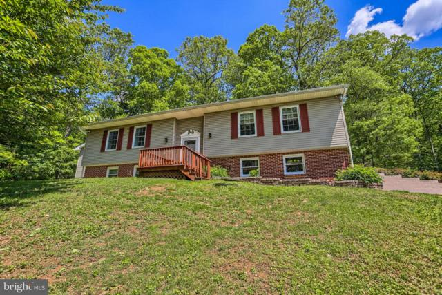 628 Deer Road, FAWN GROVE, PA 17321 (#PAYK116548) :: The Joy Daniels Real Estate Group