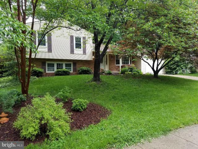 12067 Willowood Drive, WOODBRIDGE, VA 22192 (#VAPW467558) :: Colgan Real Estate