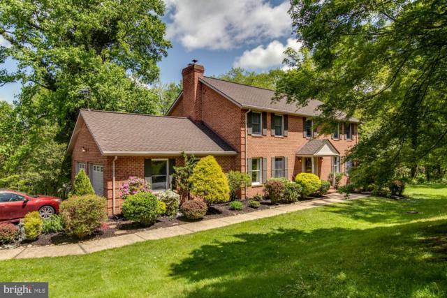 13911 Green Branch Drive, PHOENIX, MD 21131 (#MDBC457666) :: Dart Homes
