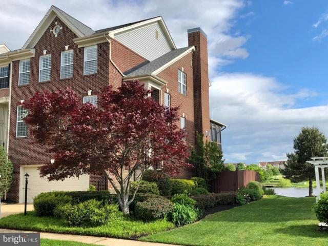 44031 Lords Valley Terrace, ASHBURN, VA 20147 (#VALO383788) :: The Miller Team