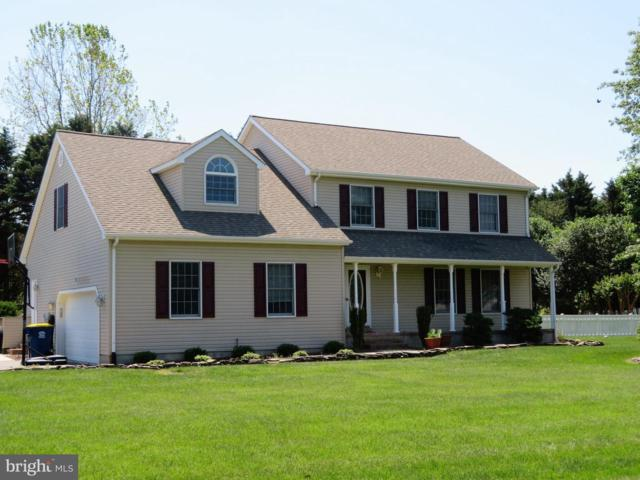 15 Gosling Drive, LEWES, DE 19958 (#DESU140210) :: Barrows and Associates