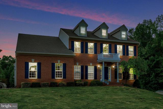 1311 Mountain View Road, STAFFORD, VA 22554 (#VAST210648) :: Jim Bass Group of Real Estate Teams, LLC