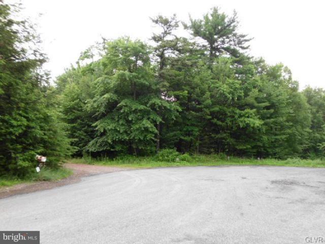 0 Lamontage Drive, PALMERTON, PA 18071 (#PACC115160) :: ExecuHome Realty
