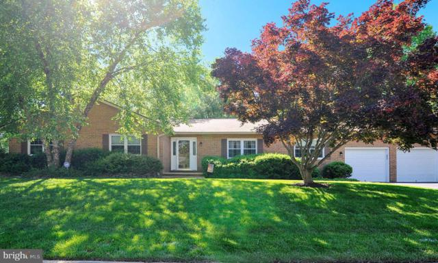 21 Pheasant Lane, LA PLATA, MD 20646 (#MDCH201894) :: The Maryland Group of Long & Foster Real Estate