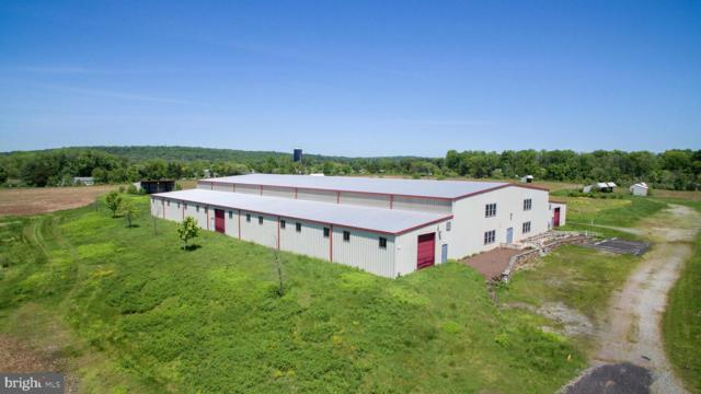 4506 New Hope Road, FURLONG, PA 18925 (#PABU468512) :: Tessier Real Estate