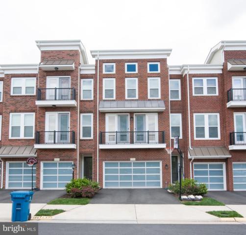 23500 Hillgate Terrace, BRAMBLETON, VA 20148 (#VALO383856) :: Advance Realty Bel Air, Inc