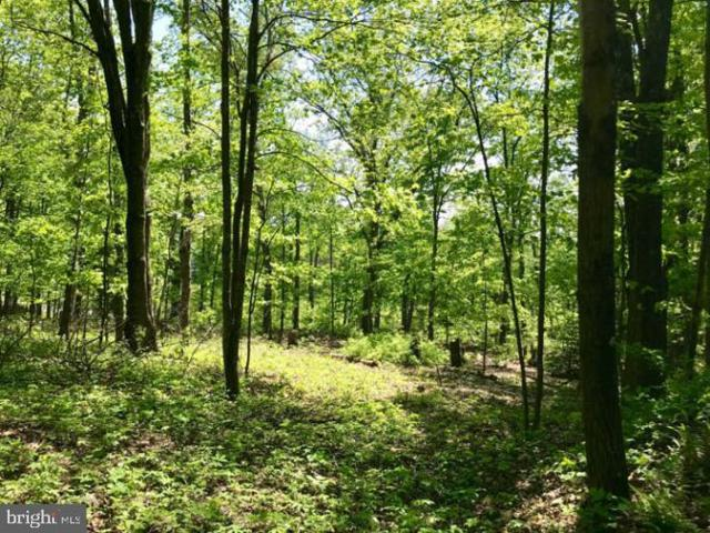 Lot # 1 Heritage Hills, ICKESBURG, PA 17037 (#PAPY100838) :: The Joy Daniels Real Estate Group
