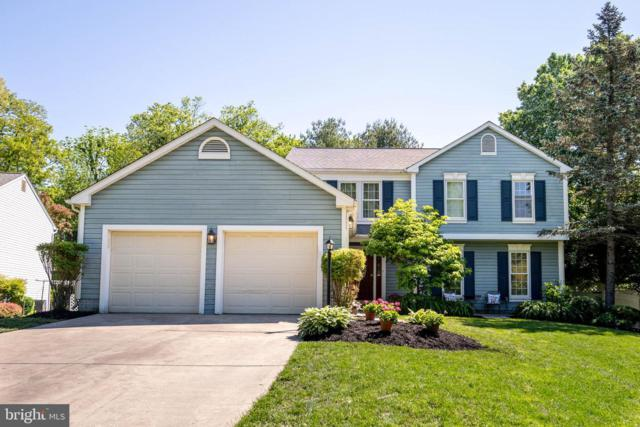 10222 Globe Drive, ELLICOTT CITY, MD 21042 (#MDHW263720) :: The Miller Team
