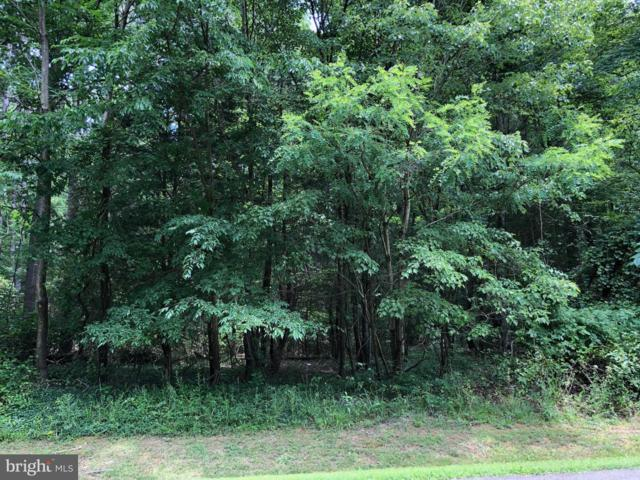 Parcel 365 Lake Forest Drive, MINERAL, VA 23117 (#VALA119154) :: AJ Team Realty