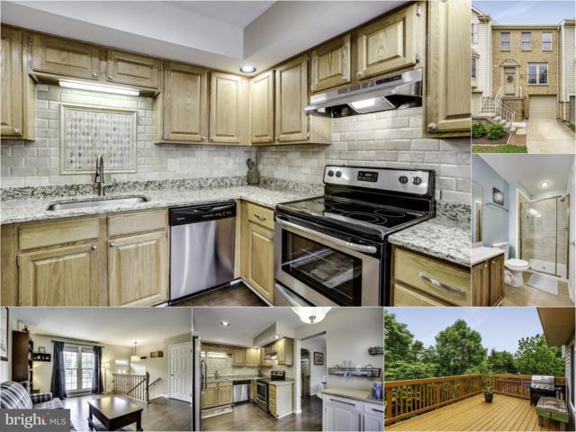 21910 Greentree Terrace, STERLING, VA 20164 (#VALO384122) :: Advon Real Estate