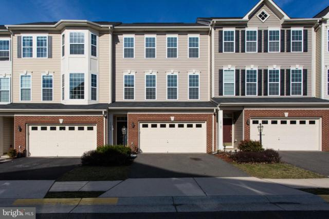25109 Bottlebrush Terrace, ALDIE, VA 20105 (#VALO384124) :: The Greg Wells Team