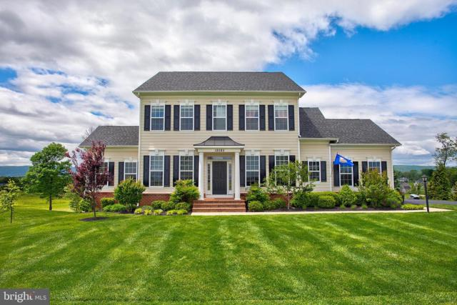 18585 Montague Place, PURCELLVILLE, VA 20132 (#VALO384138) :: LoCoMusings