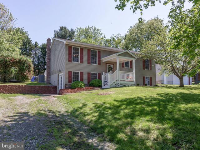 19 Granite Run Drive, CONOWINGO, MD 21918 (#MDCC164172) :: ExecuHome Realty