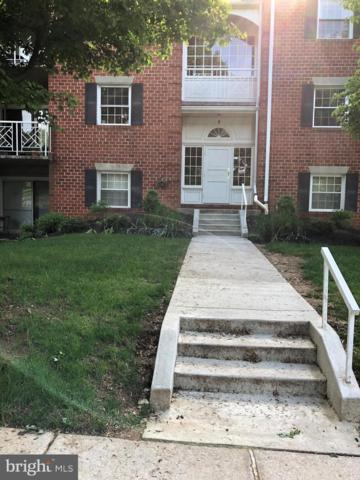 4 Brooking Court #101, LUTHERVILLE TIMONIUM, MD 21093 (#MDBC458166) :: The Kenita Tang Team