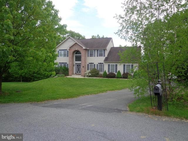 46 Mountain View Lane, POTTSVILLE, PA 17901 (#PASK125832) :: Teampete Realty Services, Inc