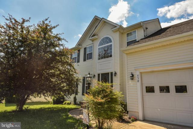 530 Windermere Drive, CULPEPER, VA 22701 (#VACU138386) :: The Daniel Register Group