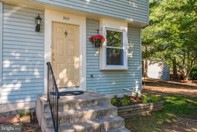300 Marcum Court, STERLING, VA 20164 (#VALO384252) :: The Maryland Group of Long & Foster Real Estate