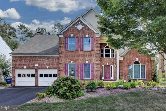 2523 Fallon Drive, OAK HILL, VA 20171 (#VAFX1062780) :: The Riffle Group of Keller Williams Select Realtors