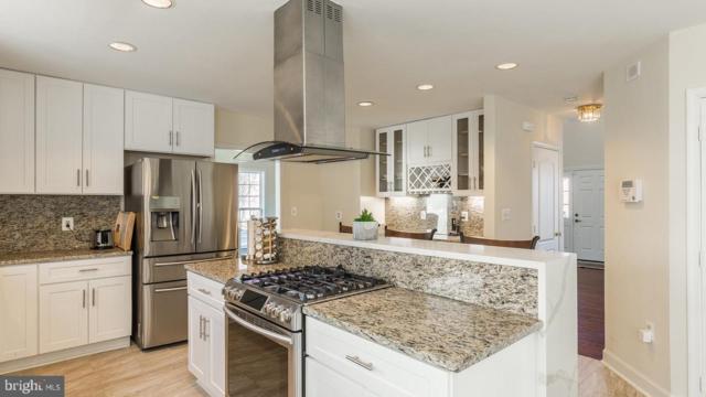 21337 Clappertown Drive, ASHBURN, VA 20147 (#VALO384286) :: The Riffle Group of Keller Williams Select Realtors