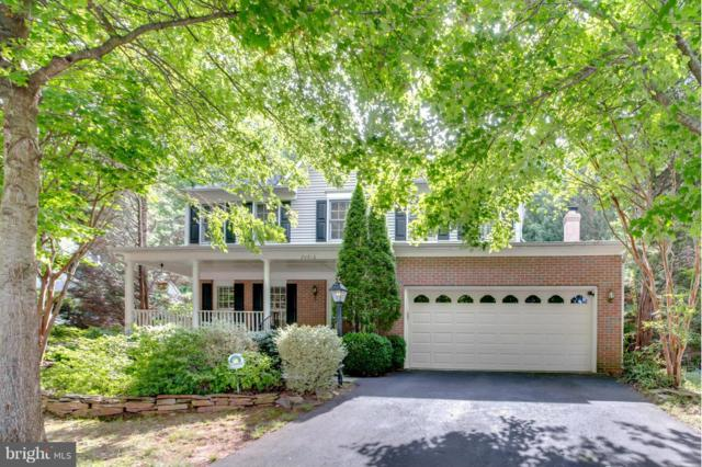 20816 Waterbeach Place, STERLING, VA 20165 (#VALO384322) :: Great Falls Great Homes