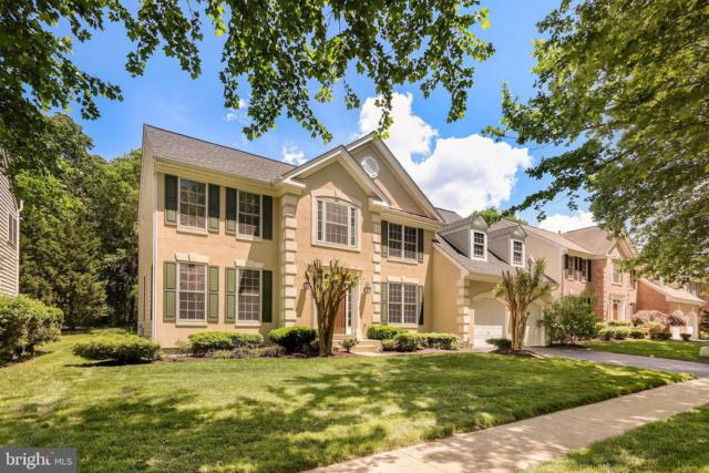 43759 Mink Meadows Street, CHANTILLY, VA 20152 (#VALO384328) :: Bic DeCaro & Associates