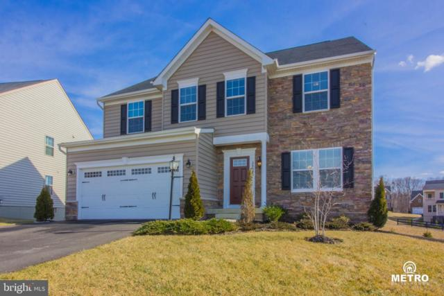 26045 Equestrian Gala Court, ALDIE, VA 20105 (#VALO384382) :: Circadian Realty Group