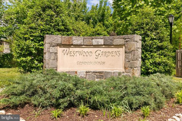 10859 Amherst Avenue #301, SILVER SPRING, MD 20902 (#MDMC659562) :: The Gus Anthony Team
