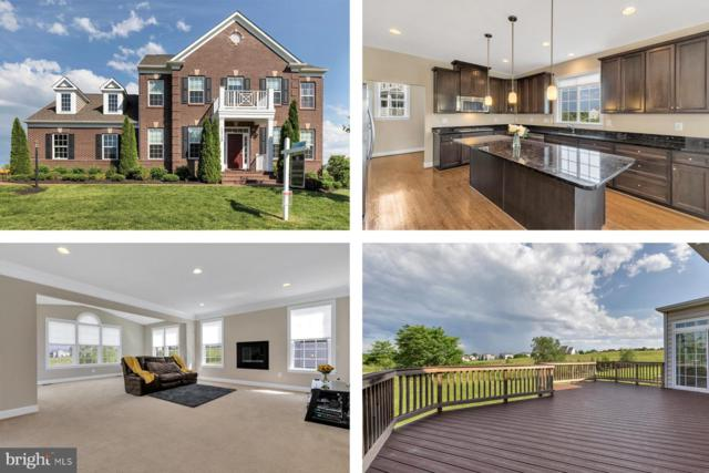 15726 Trongate Court, LEESBURG, VA 20176 (#VALO384410) :: The Miller Team