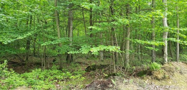 0 Chain Saw Road, DILLSBURG, PA 17019 (#PAYK117034) :: The Heather Neidlinger Team With Berkshire Hathaway HomeServices Homesale Realty